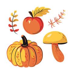 Autumn harvest set apple pumpkin mushrooms vector