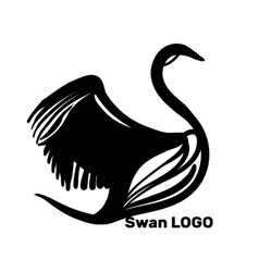 Black Swans Logo Design template vector