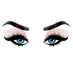 blue eyes make up vector image