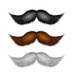 Brown Black and White Isolated Mustaches Set vector image