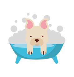 Cute dog bathing in the tub vector