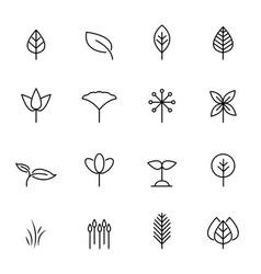 leaf icon set nature and symbol concept thin vector image