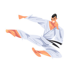 Man jumping side kick male karate fighter vector