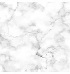 marble granite white panorama background vector image