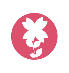 beauty flower natural icon vector image vector image
