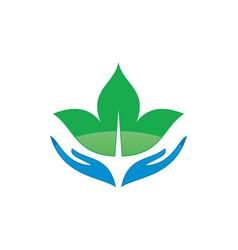 hand leaf logo image vector image