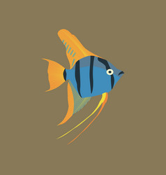 in flat style angelfish vector image