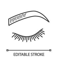 microblading eyebrows linear icon vector image