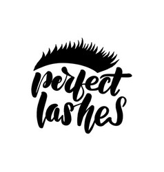 perfect lashes handwritten lettering card vector image