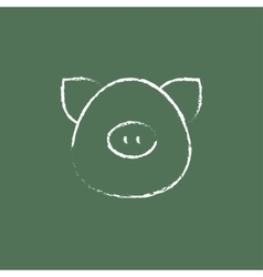 Pig head icon drawn in chalk vector image
