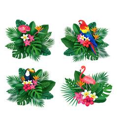 tropical set summertime design vector image