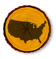 Usa map on timber section vector