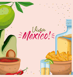 viva mexico colorful poster of mexican traditional vector image