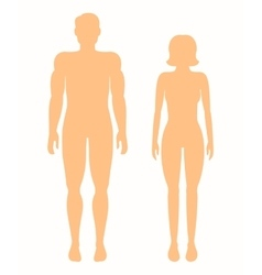 Human silhouettes man and woman vector image