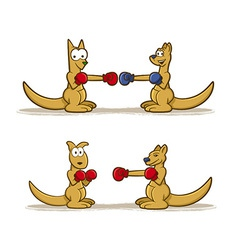 Boxing Kangaroo Set vector