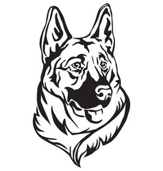 decorative portrait of german shepherd vector image