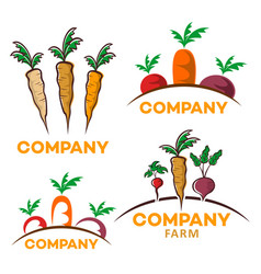 useful vegetables logo vector image