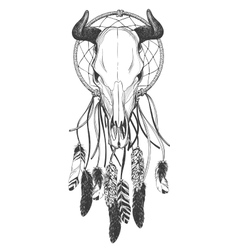 Bull skull with feathers and dreamcatcher vector