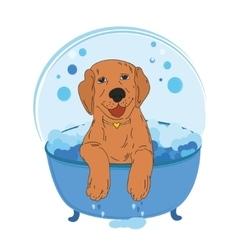 Dog bath color vector