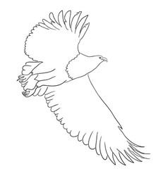 Eagle line art 03 vector