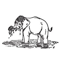 Elephants child vintage vector