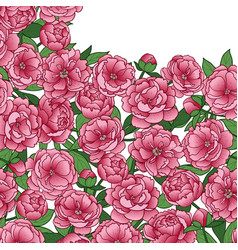 peonies squared mock up vector image
