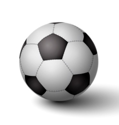 Realistic soccer ball for football icon vector