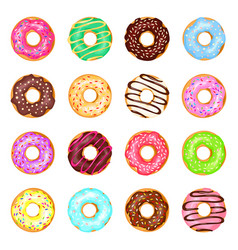 sweet donuts set vector image