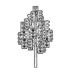 traffic light tree sketch engraving vector image