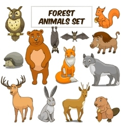 Cartoon forest animals set vector image