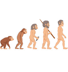 Cartoon human evolution vector