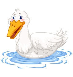 Duck swimming in the pond vector image