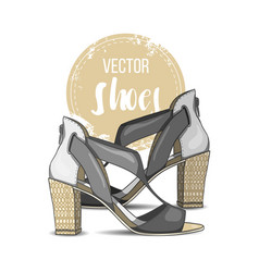 fashion color womens shoes vector image