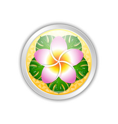 silver or platinum hawaiian badge in polynesian vector image