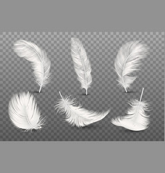 3d realistic different falling white fluffy vector image