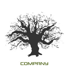 black branchy tree logo vector image