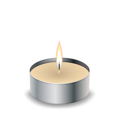 candle light flame isol on white vector image