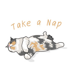 Cat character take a nap on graphic vector