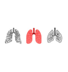 drawing of a human lung doodle sketch flat style vector image