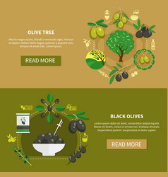 olive tree horizontal banners vector image