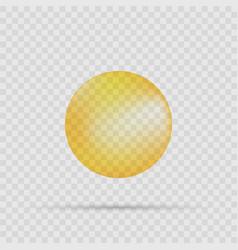 realistic oil bubble eps10 vector image