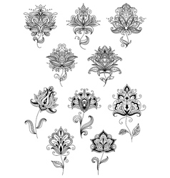 Vintage floral paisley elements and blossoms vector image