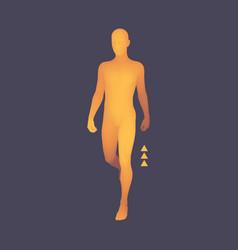 walking man 3d human body model design element vector image