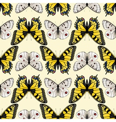 butterfly seamless3 vector image vector image