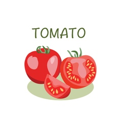 Tomato icon in flat style Isolated objec vector image