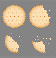 Bitten chip biscuit cookie cracker vector