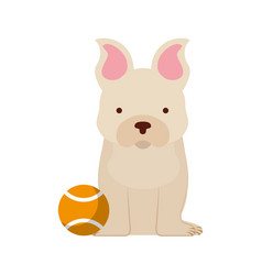 Cute dog mascot with tennis ball vector