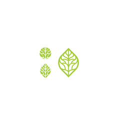 line art leaf logo icon vector image
