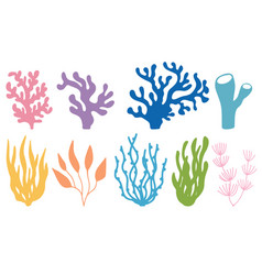 Set colored corals and seaweeds vector