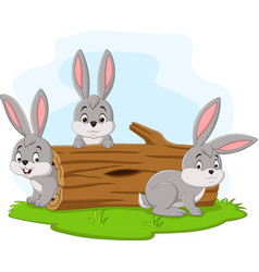 three rabbit cartoon playing in log vector image